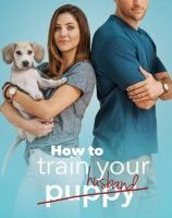 How to Train Your Husband (2018) fzmovies free download MP4