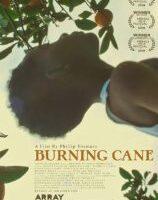Burning Cane (2019) Fzmovies Free Download Mp4