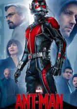 Ant Man (2015) Fzmovies Free Mp4 Download
