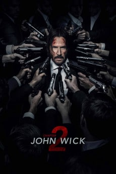 John Wick Chapter 2 download