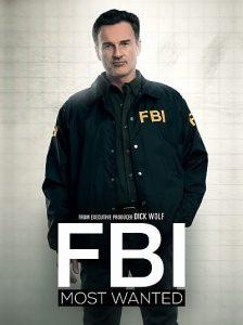 FBI Most Wanted Season 1, 2, Fztvseries Free Download