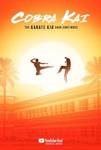 Cobra Kai Season 1, 2, 3, Fztvseries Free Download