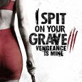 I Spit on Your Grave 3 (2015) Fzmovies Free Download