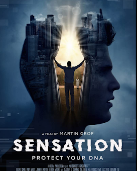 Sensation (2021) Fzmovies Free Download