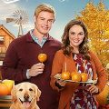 Love Fall and Order 2019 Movie Download Mp4