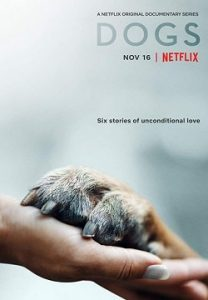 Dogs Complete S02 Free Download Mp4