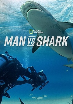 Man vs Shark 2019 Fzmovies Free Download Mp4