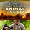 Magic of Disneys Animal Kingdom Complete S01 Free Download Mp4