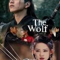 The Wolf Complete S01 CHINESE Free Download Mp4