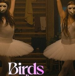 Birds of Paradise 2021 Fzmovies Free Download Mp4